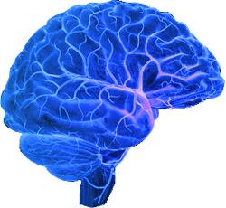 brain-blue-electric